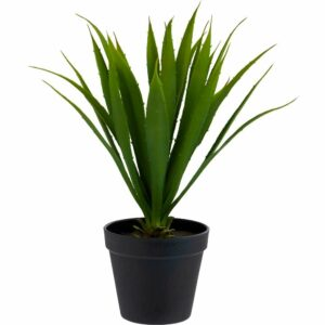 Wilko Agave Potted Plant 85% Plastic, 5% Styrofoam, 5% Wire, 5% Sand