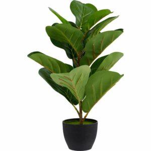 Wilko Fiddle Fig Potted Plant Plastic 85%, Styrofoam 10%, Sand 5%,