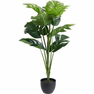 Wilko Large Cheese Plant In Pot Plastic 35%, Cement 25%, Styrofoam 30%, Sand, Rope