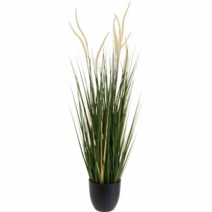 Wilko Pampas Grass Potted Plant 85% Plastic, 5% Styrofoam, 5% Wire, 5% Sand