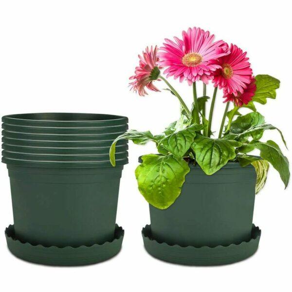 8 Packages 16cm Flower Pot Plastic Green Pots with Soucer Plastic Pot Plastic Garden Outdoor and Interior For Bonsai Plants Succulent Aloe Herb