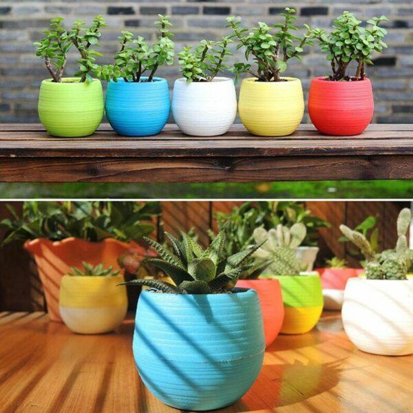 1PC blue Mini Flower Pots Colourful Round Plastic Plant Flower Pot planters for succulents Decor Plants Desktop Flower Pots Maceta